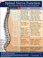 SPINAL NERVE FUNCTION FORM